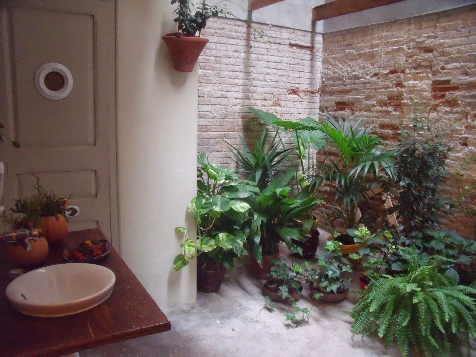 Tracycorrecaminos ha aparecido un nuevo vicio en mi vida for Jardines interiores