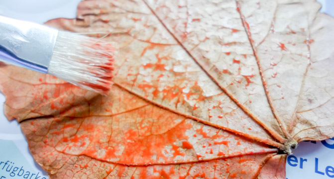DIY - Herbst Dekoration