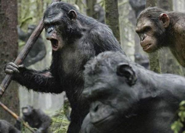 son seri maymunlar cehennemi