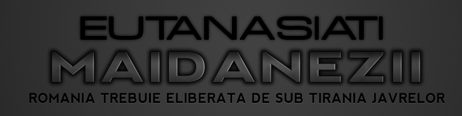 Maidanezii Din Romania