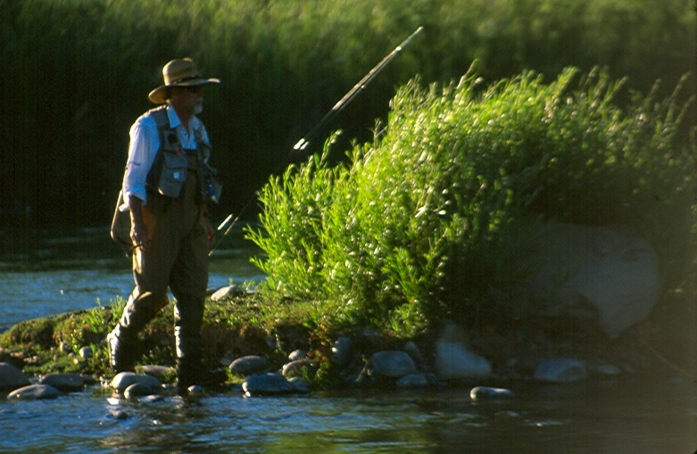 All about fishing dry fly on the san juan for San juan fly fishing