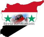 I favor the Syrian Revolution