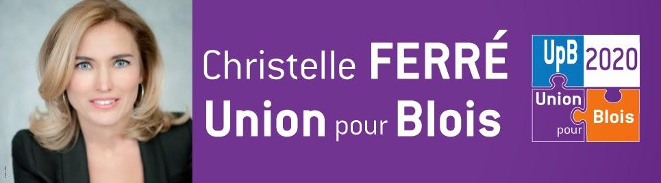 Union pour Blois 2020