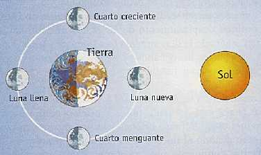 Tanto La Luna  O La Tierra Poseen Movimientos De Rotaci  N Y