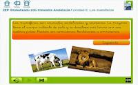 http://www.primaria.librosvivos.net/2epcmcp_ud5_a1_cas_LosMamiferos_26.html