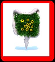 Trucuri sanatoase pentru colon