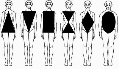 imagen tipos de cuerpo