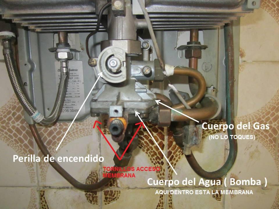Mi calentador de gas no calienta el agua