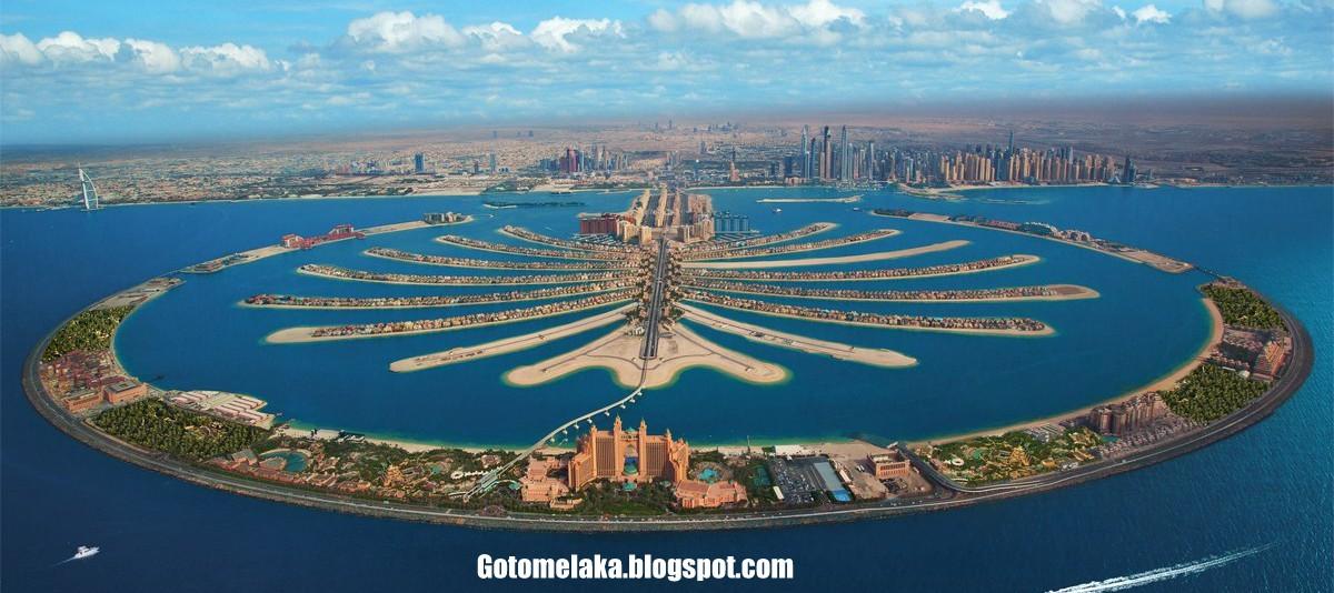 Planting trees in united arab emirates