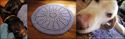 3 photos of the wagon wheel rug - one laid out on a hardwood floor. 1 with a chocolate Lab laying upside down on top of the rug, and one with a yellow Lab resting her chin on the rug.