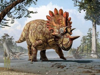 Ditemukan Hellboy Dinosaurus Bertanduk Jenis Baru