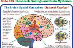 Fakta Menarik Otak Manusia