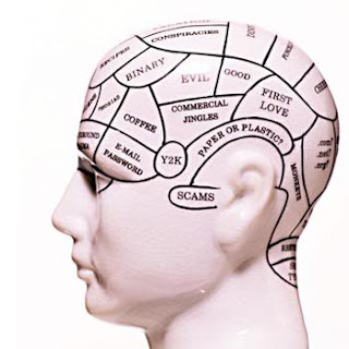 brain development essay Furthermore, brain plasticity facilitates the development of talents and life time interests however, trauma, neurotoxic insult, chronic stress, inactive lifestyles and drug abuse, have a negative impact at this period of brain maturation.