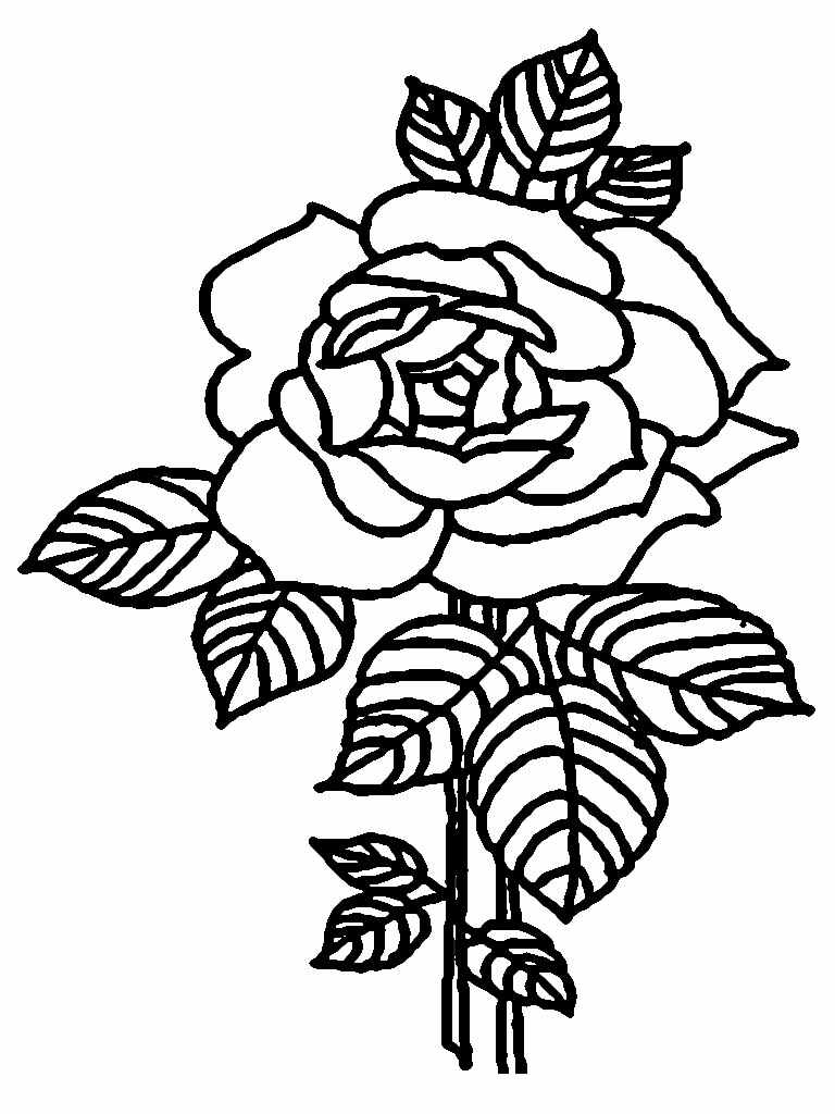 Sweet Rose Flower Valentine Coloring Pages Printable