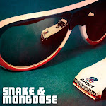 Snake and Mongoose Sunglass Collection