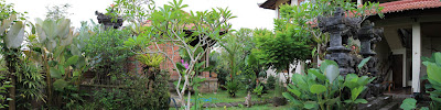 Garden of House for rent in Ubud
