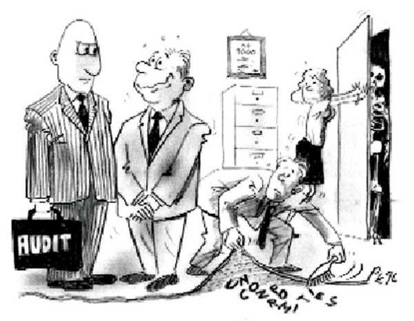 Internal Audit Cartoons Funny
