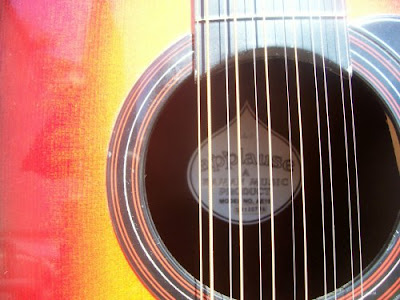 Applause AE-15 12-string soundhole label