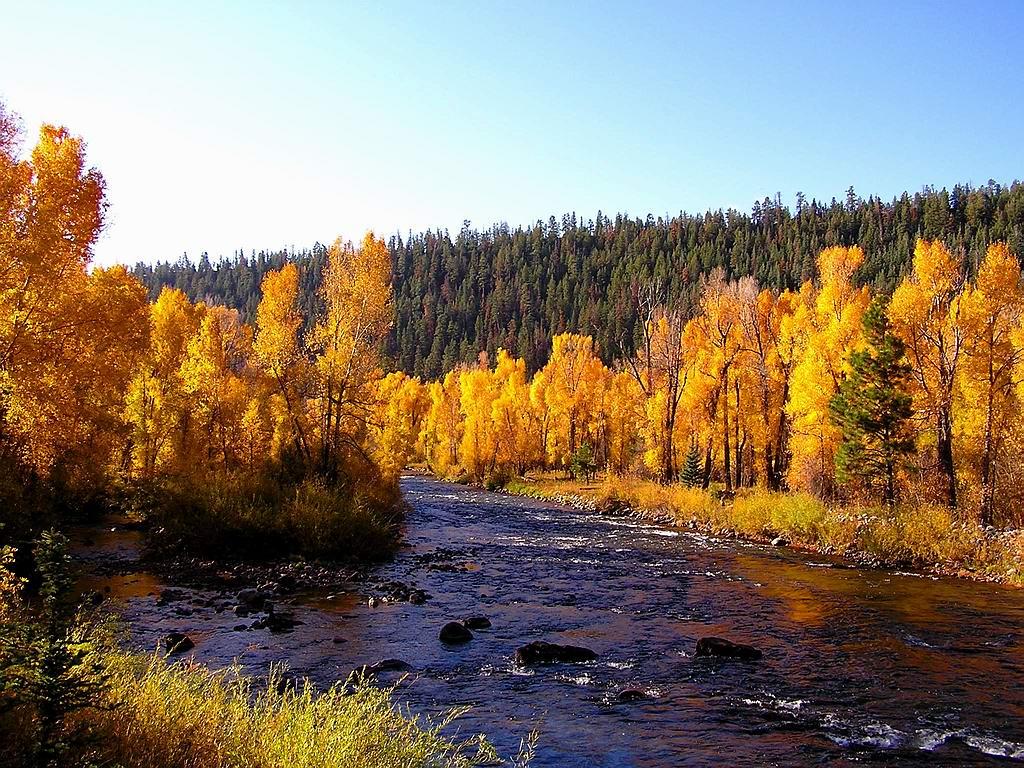 http://4.bp.blogspot.com/-RHzUAbvIyxY/TrQ8udRM3cI/AAAAAAAAFvs/ygt5gfv25B8/s1600/Cute+Autumn+River+Wallpaper.jpg