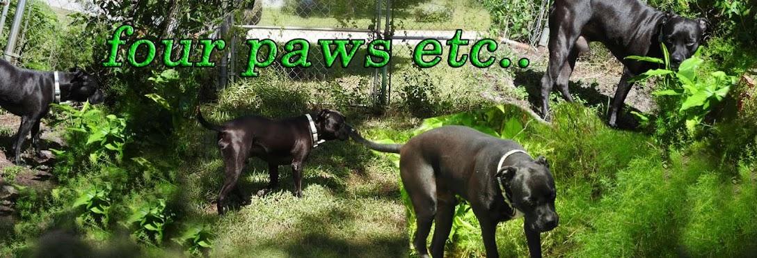 Four Paws Etc