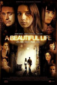 A Beautiful Life 2008 Hollywood Movie Watch Online