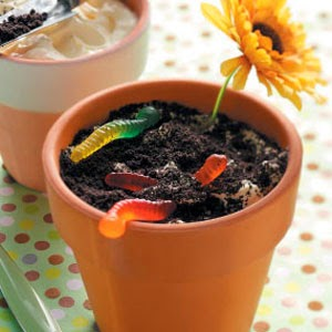 http://www.tasteofhome.com/recipes/dirt-cake