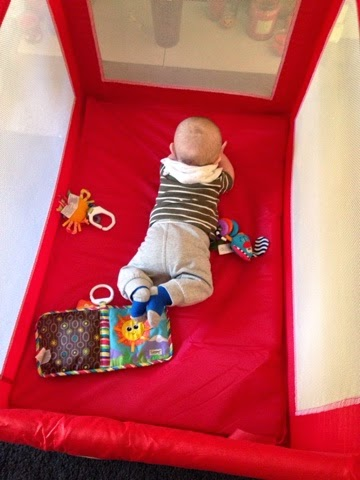 Beau is blue, beauisblue, injections, travel cot