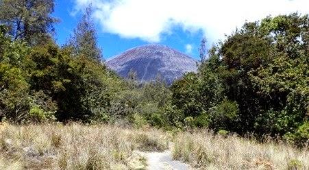 jalur pendakian ke gunung semeru