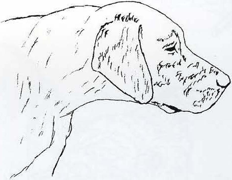 эскизы рисунков резьбы по дереву: