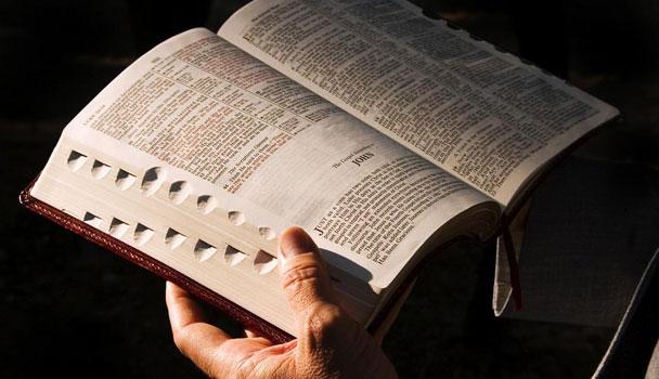 Leia a Bíblia On Line