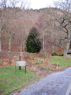 Walk around Craigendarroch, Ballater, Deeside