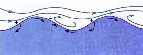 ¿por que la septima ola es la mas grande?