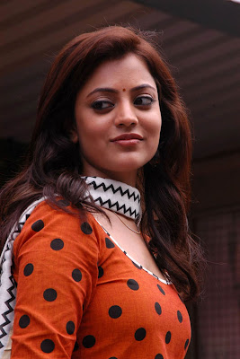 Nisha Agarwal Hot Photos