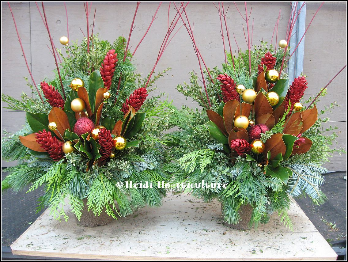 Christmas Decorating Ideas For Outdoor Urns : Heidi horticulture november