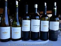 Leia o artigo sobre a visita do Blog Vinho SIM à Bodega Bouza