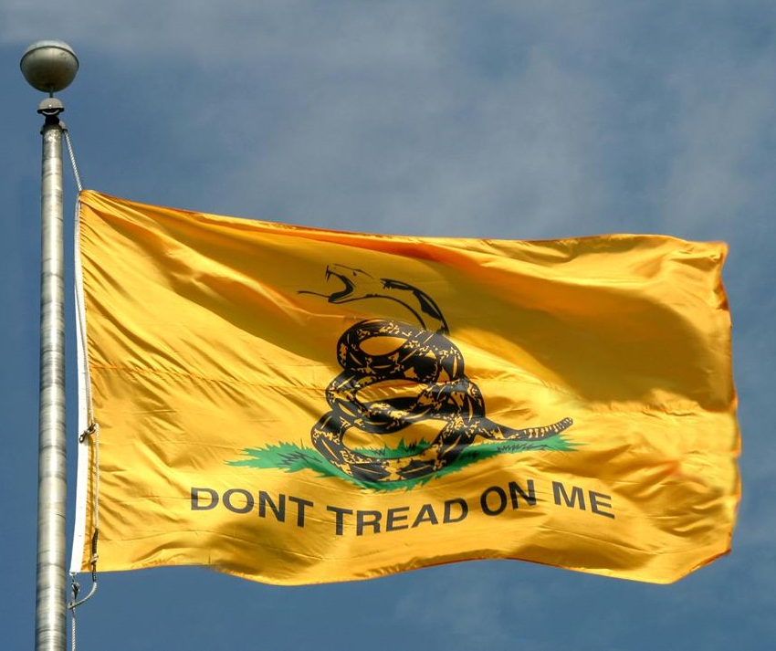 Historical Flags of Our Ancestors - Modern American Protest and ...