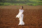 Shriya sharma glamorous photos-thumbnail-7
