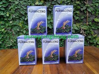 Obat Kuat Herbal Alami Tanpa Efek Samping