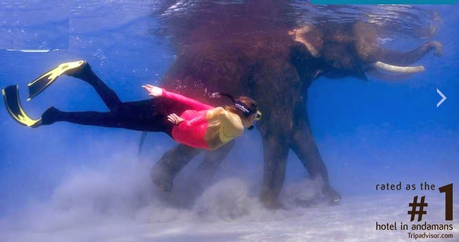 Snorkeling with Elephant, Barefoot at Andaman