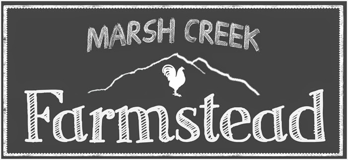 Marsh Creek Farmstead