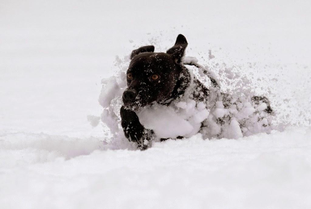 Bodzaforduló, Csíkszereda, hideg, időjárás, Románia, Székelyföld, tél,