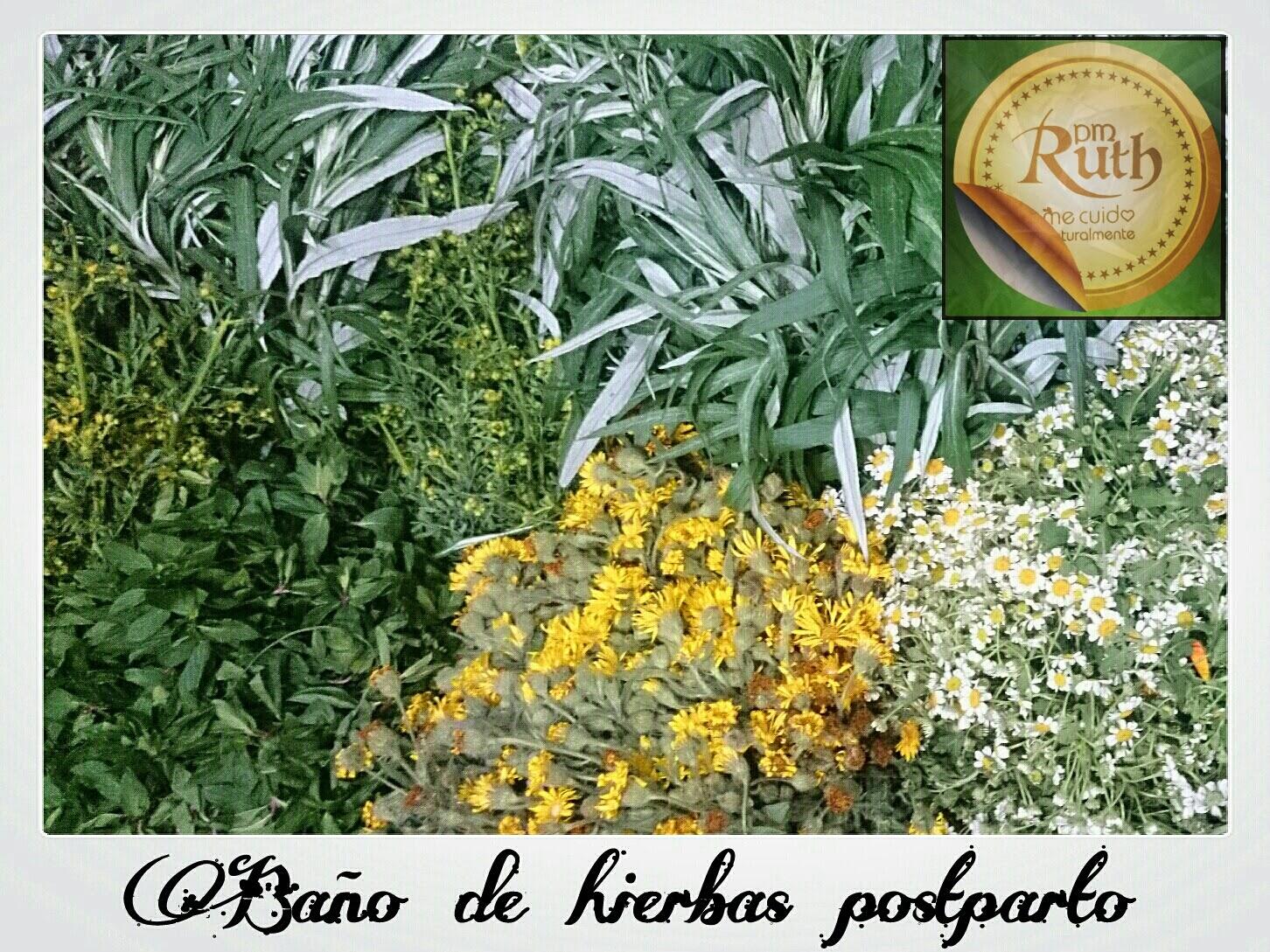 Baños Plantas Medicinales:Hierbas Medicinales Para Desinflamar