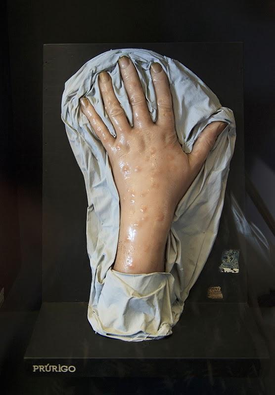 museo de la inquicision: