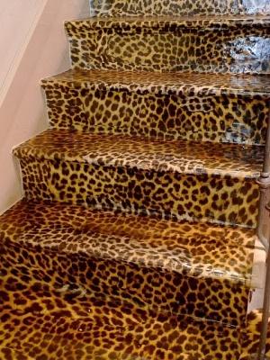 New Furniture Home Decor Gone Wild