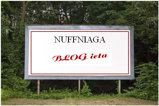 TIPS NUFFNIAGA DARI BLOGGER BEN ASHAARI, BLOG ieta, NUFFNANG