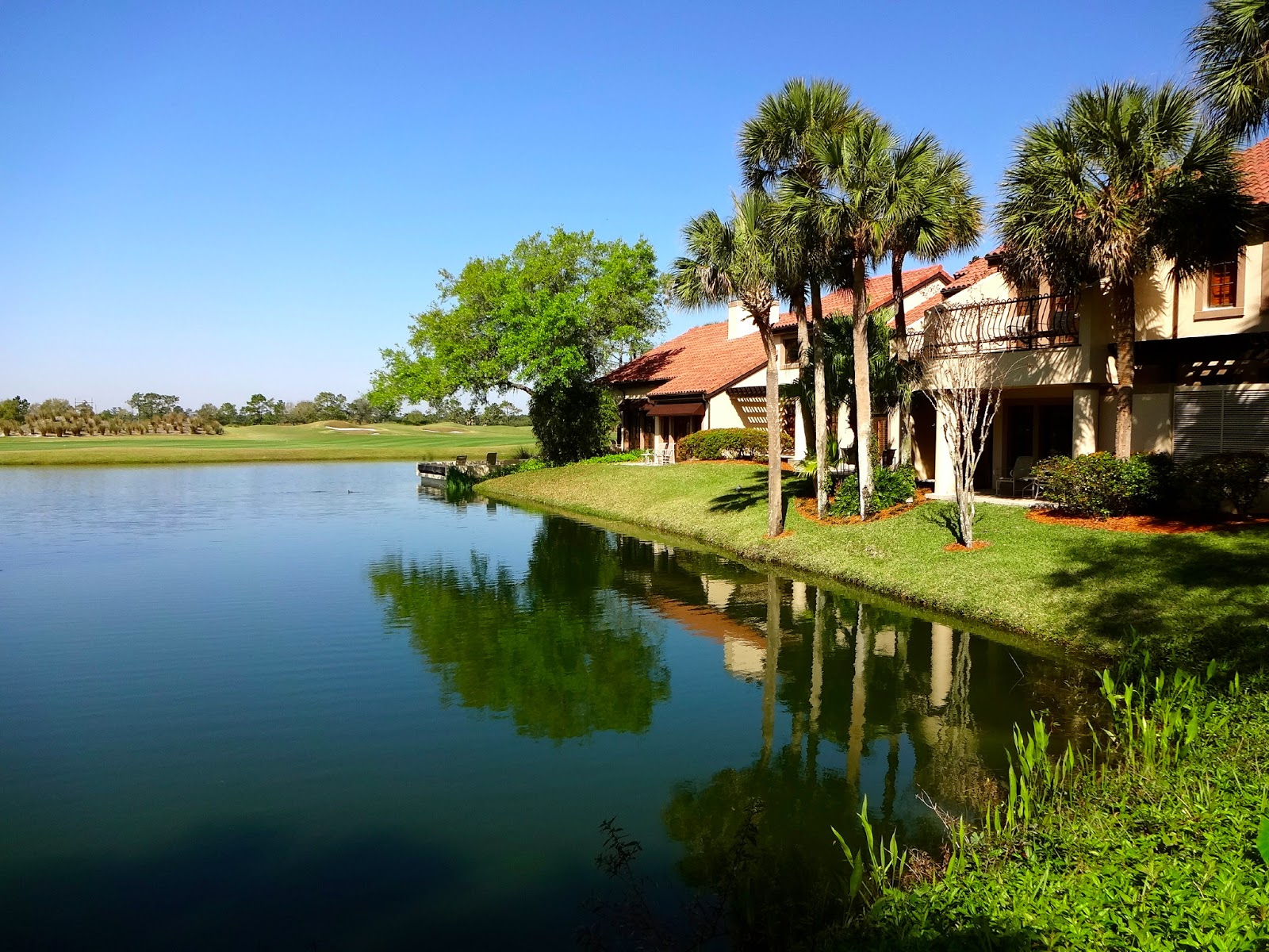 the reimagined villas at grand cypress check in florida
