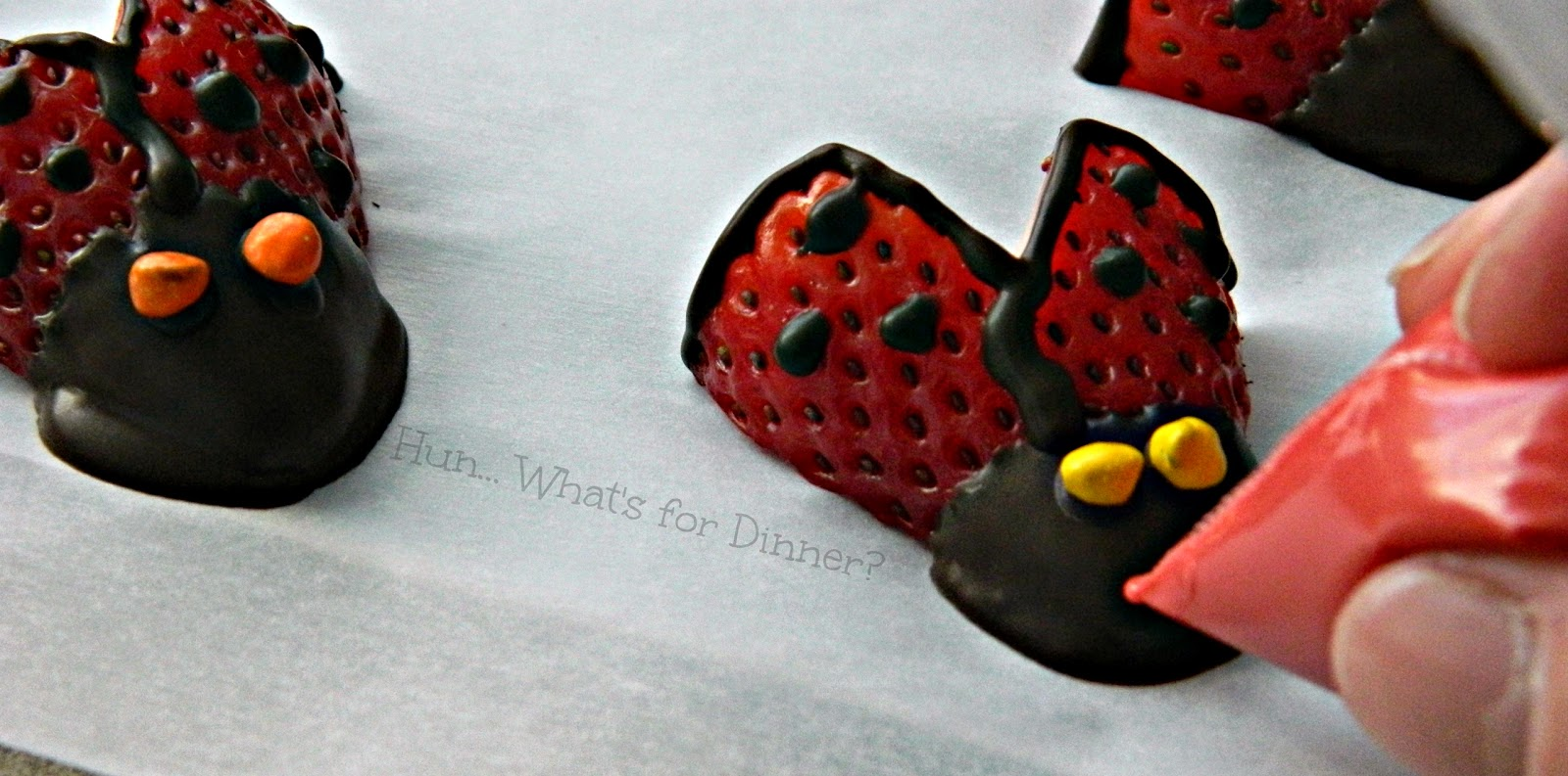 Hun... What's for Dinner?: Chocolate Covered Strawberry Lady Bugs Tutorial