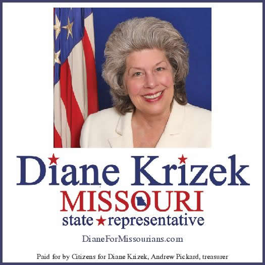 Diane Krizek for State Representative