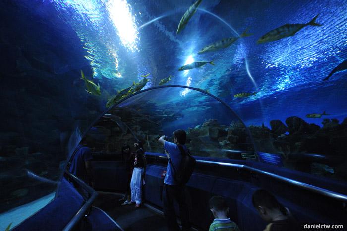 Aquaria-KLCC.jpg