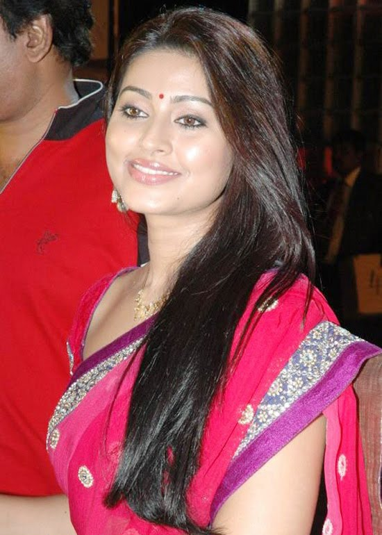 Telugu Babe Sneha, Telugu Actress Sneha in Pink Saree showing her Long Hairs